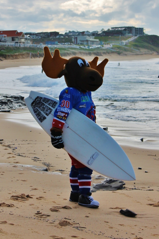 Marty Moose at Merewether